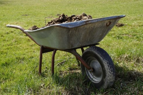 Clarificări cu privire la amenajările pentru gestionarea gunoiului de grajd