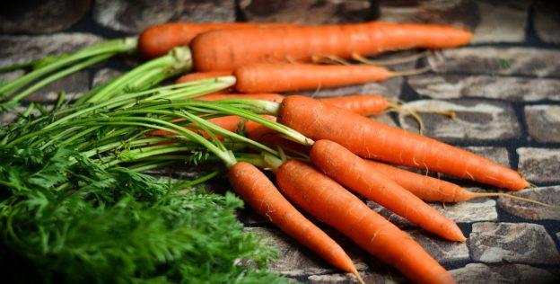 Modificarea legislației în domeniul produselor agroalimentare ecologice